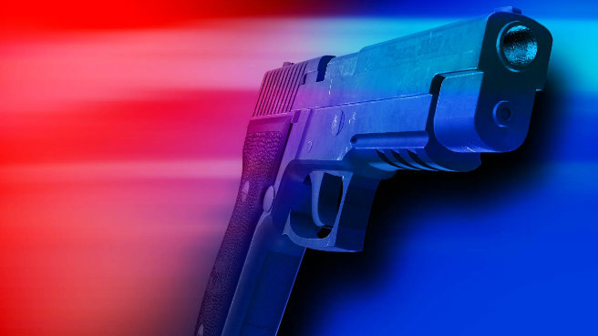 Lecanto man shot during standoff