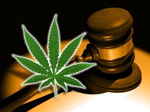 Medical marijuana dispensaries coming to Citrus County