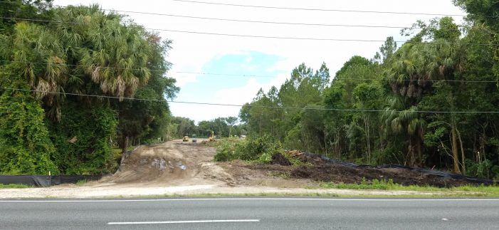 Letter to the Editor: Stop allowing Crystal River to be destroyed