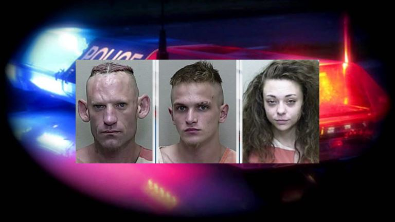 meth, faces of meth, citrus gazette