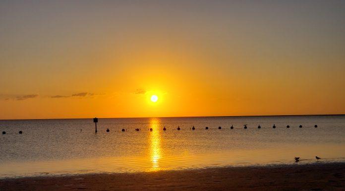 Fort Island Gulf Beach, citrus gazette, citrus county news