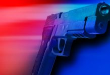 crystal river shooting, citrus county , citrus gazette