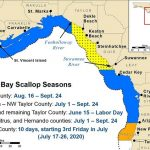 Scalloping season for Florida: areas and dates