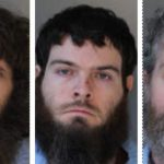 Three men had intercourse with animals hundreds of times, say punishment was too harsh