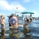 Bay scallop season opens July 1 for certain counties